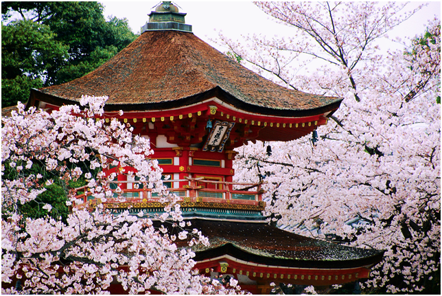 http://blog.friendlyplanet.com/media/japanese-pagoda.png